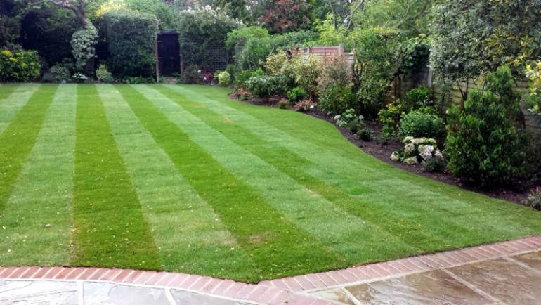 A new lawn and spruce up
