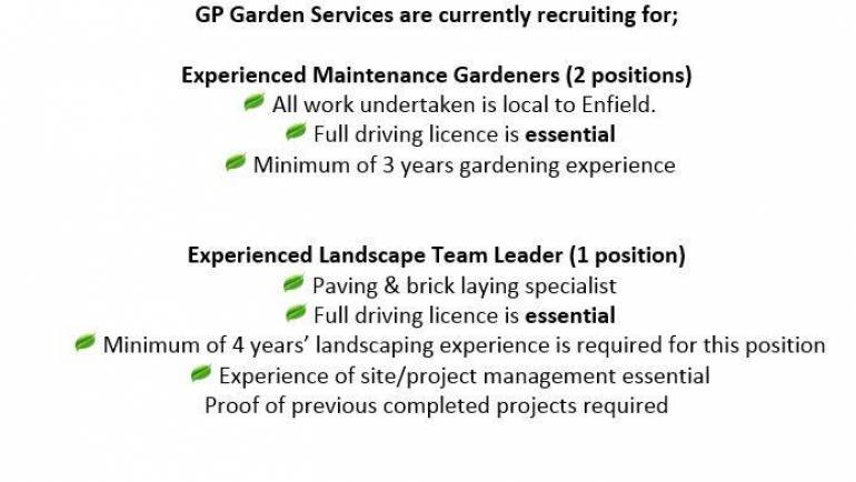 Job Vacancies…..