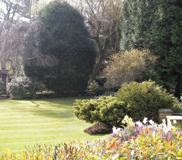 Does Your Garden Need A Bit Of Attention?