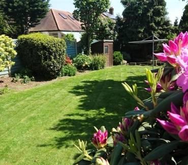 June Gardening Tips