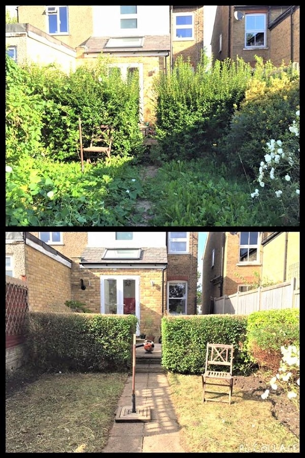 Gardens Reclaimed! Jungles Tamed! Ground Clearance!
